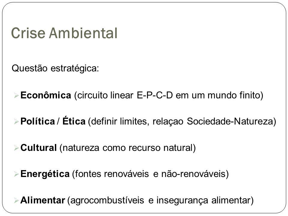 Crise Ambiental Questão estratégica: Econômica (circuito linear E-P-C-D em um mundo finito) Política / Ética (definir limites, relaçao Sociedade-Natur