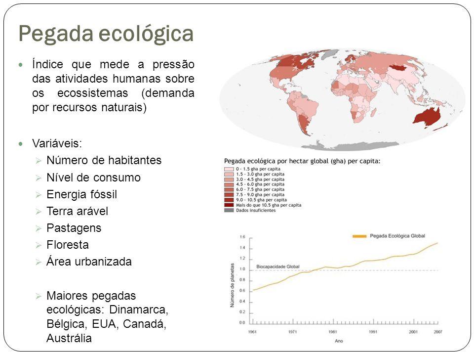Pegada ecológica Índice que mede a pressão das atividades humanas sobre os ecossistemas (demanda por recursos naturais) Variáveis: Número de habitante