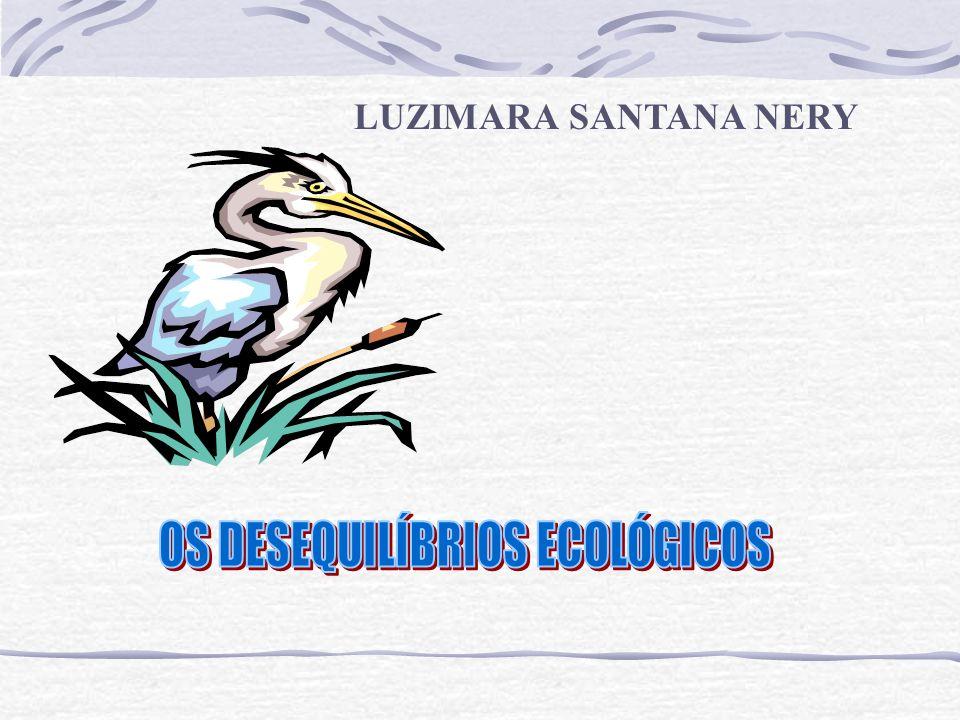 LUZIMARA SANTANA NERY
