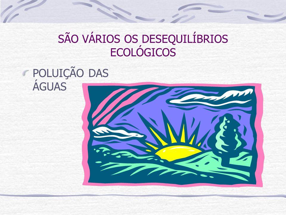 SÃO VÁRIOS OS DESEQUILÍBRIOS ECOLÓGICOS POLUIÇÃO DAS ÁGUAS