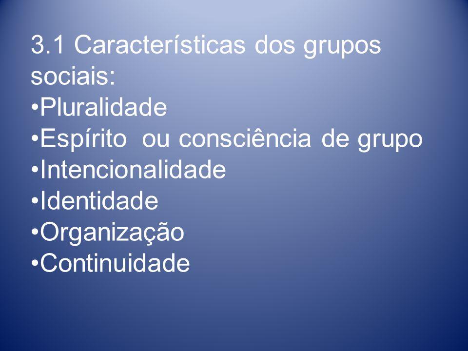 3.1 Características dos grupos sociais: Pluralidade Espírito ou consciência de grupo Intencionalidade Identidade Organização Continuidade