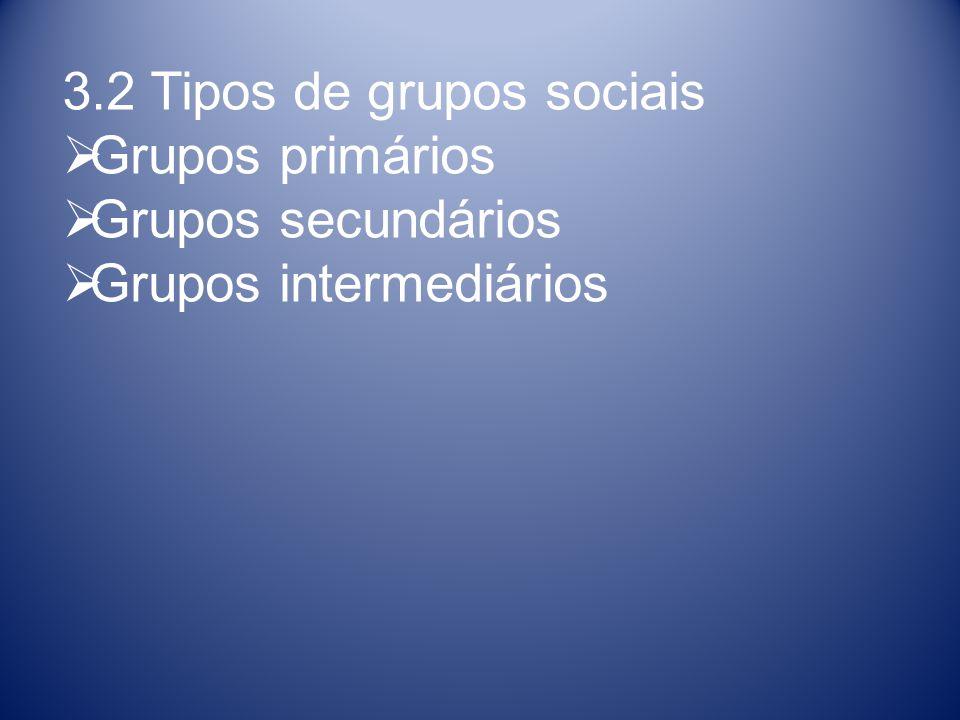 3.2 Tipos de grupos sociais Grupos primários Grupos secundários Grupos intermediários