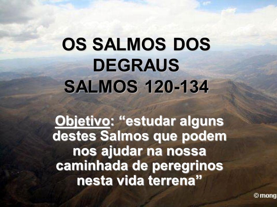 OS SALMOS DOS DEGRAUS SALMOS 120-134 Objetivo: estudar alguns destes Salmos que podem nos ajudar na nossa caminhada de peregrinos nesta vida terrena