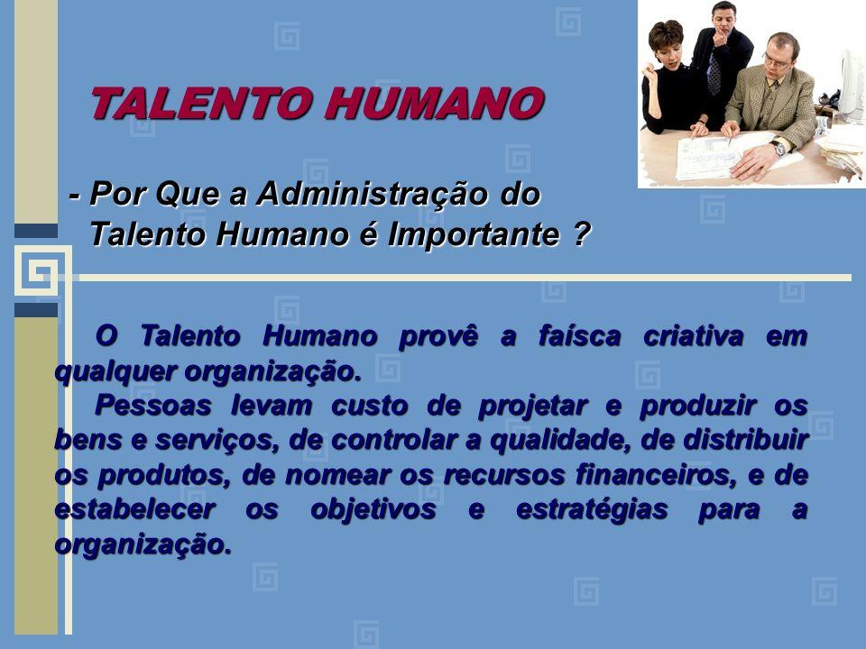 TALENTO HUMANO - Por Que a Administração do Talento Humano é Importante ? Talento Humano é Importante ? O Talento Humano provê a faísca criativa em qu