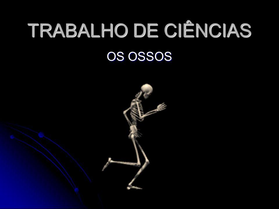 TRABALHO DE CIÊNCIAS OS OSSOS