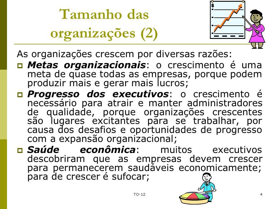 TO-124 Tamanho das organizações (2) As organizações crescem por diversas razões: Metas organizacionais: o crescimento é uma meta de quase todas as emp