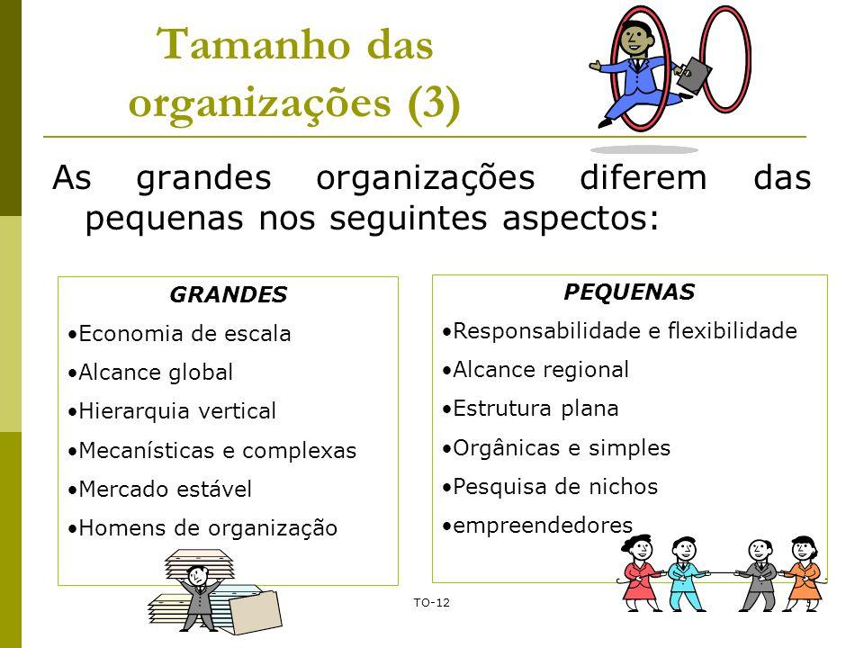 TO-125 Tamanho das organizações (3) As grandes organizações diferem das pequenas nos seguintes aspectos: GRANDES Economia de escala Alcance global Hie