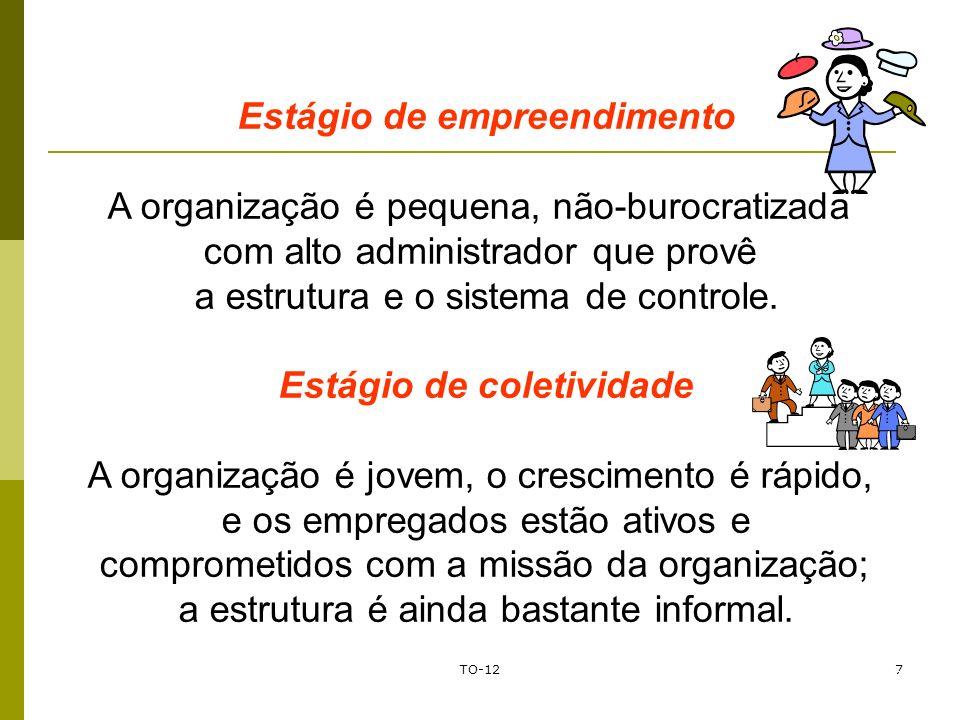 TO-127 Prof. Marcos Antonio Franklin Estágio de empreendimento A organização é pequena, não-burocratizada com alto administrador que provê a estrutura