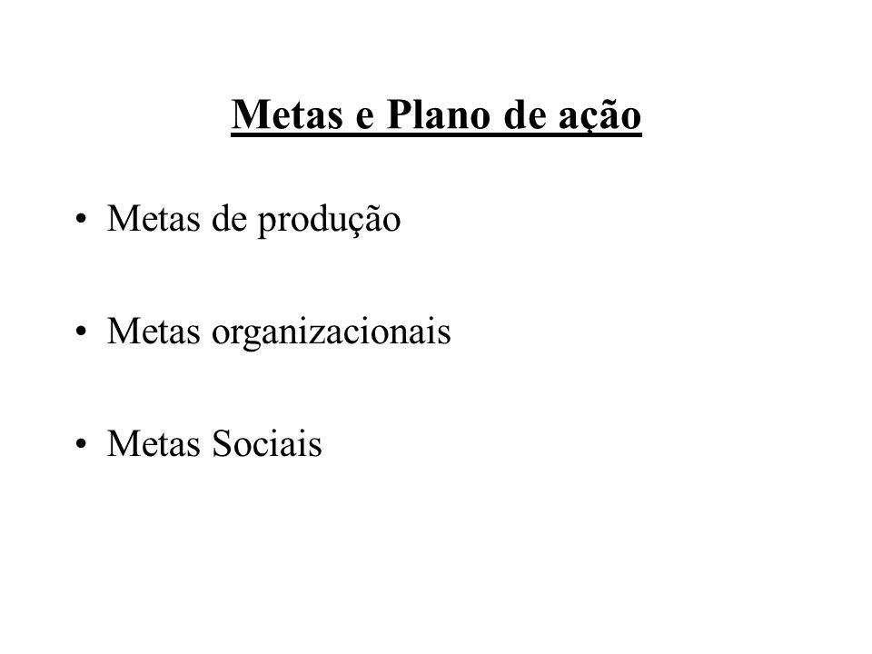 Metas e Plano de ação Metas de produção Metas organizacionais Metas Sociais