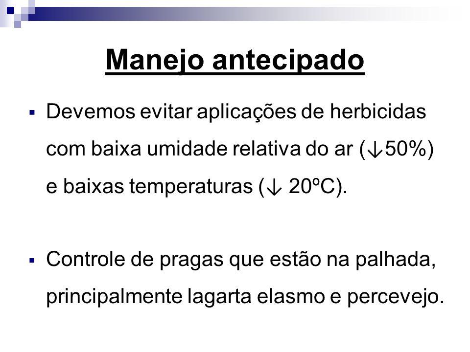 Manejo antecipado Devemos evitar aplicações de herbicidas com baixa umidade relativa do ar ( 50%) e baixas temperaturas ( 20ºC). Controle de pragas qu