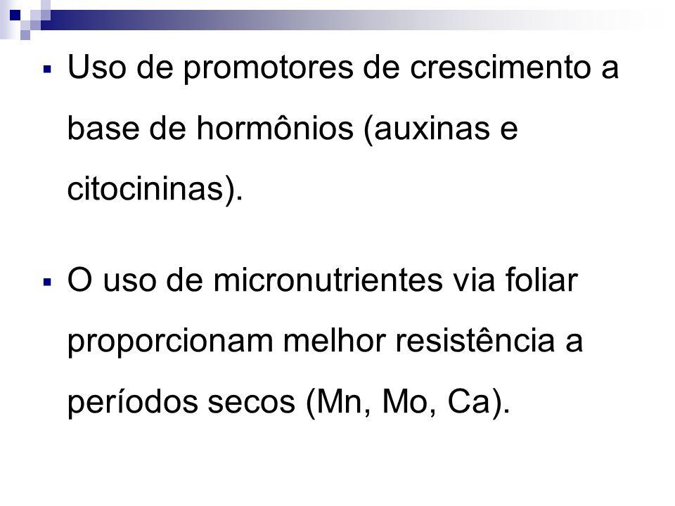Uso de promotores de crescimento a base de hormônios (auxinas e citocininas). O uso de micronutrientes via foliar proporcionam melhor resistência a pe