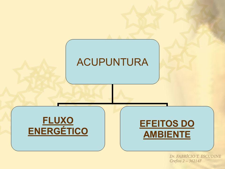 ACUPUNTURA FLUXO ENERGÉTICO EFEITOS DO AMBIENTE