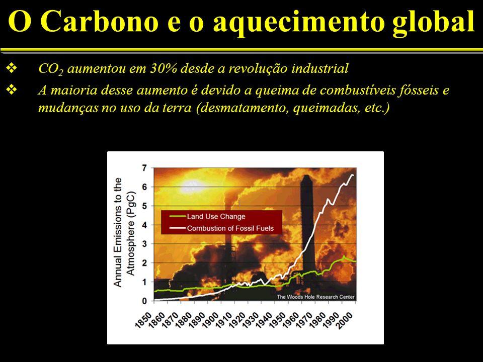 CO 2 aumentou em 30% desde a revolução industrial A maioria desse aumento é devido a queima de combustíveis fósseis e mudanças no uso da terra (desmat