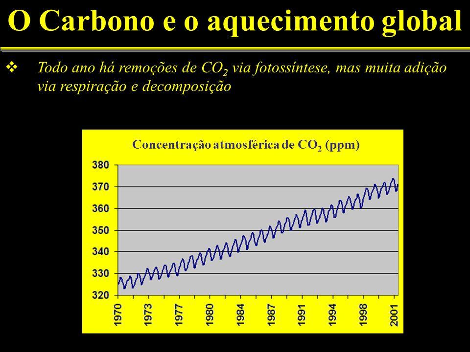Todo ano há remoções de CO 2 via fotossíntese, mas muita adição via respiração e decomposição (ppm) Concentração atmosférica de CO 2 (ppm) O Carbono e