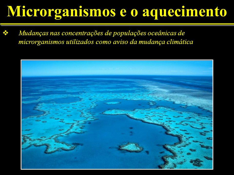 Mudanças nas concentrações de populações oceânicas de microrganismos utilizados como aviso da mudança climática Microrganismos e o aquecimento