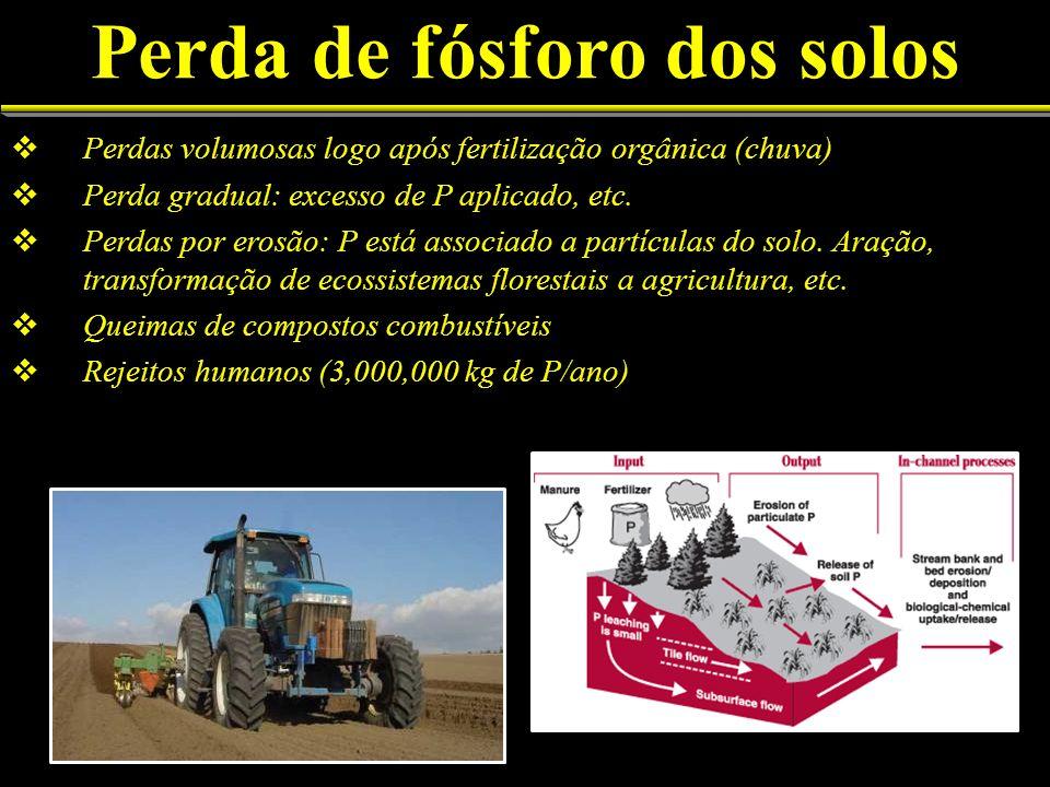 Perda de fósforo dos solos Perdas volumosas logo após fertilização orgânica (chuva) Perda gradual: excesso de P aplicado, etc. Perdas por erosão: P es