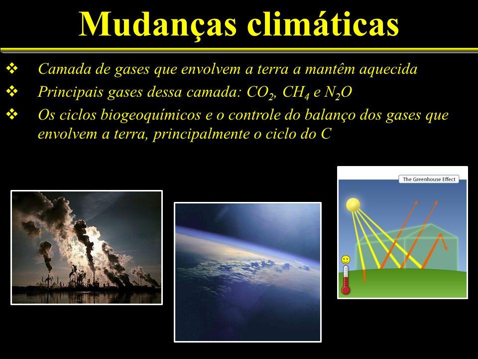 Mudanças climáticas Camada de gases que envolvem a terra a mantêm aquecida Principais gases dessa camada: CO 2, CH 4 e N 2 O Os ciclos biogeoquímicos