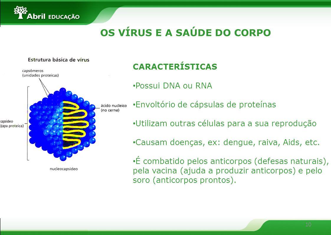 10 OS VÍRUS E A SAÚDE DO CORPO CARACTERÍSTICAS Possui DNA ou RNA Envoltório de cápsulas de proteínas Utilizam outras células para a sua reprodução Cau