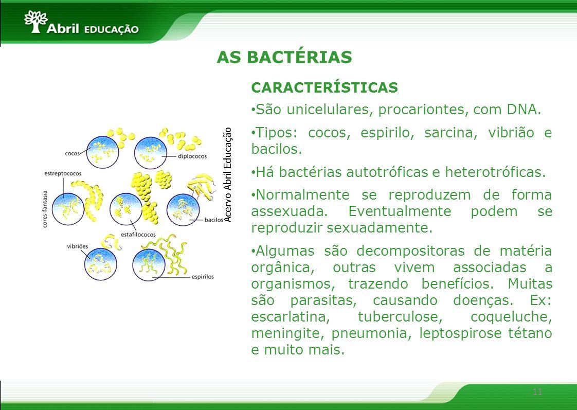 11 AS BACTÉRIAS CARACTERÍSTICAS São unicelulares, procariontes, com DNA. Tipos: cocos, espirilo, sarcina, vibrião e bacilos. Há bactérias autotróficas