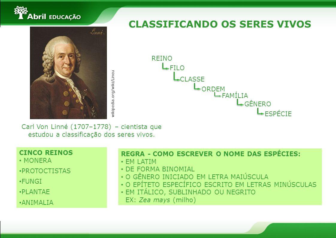 CLASSIFICANDO OS SERES VIVOS Carl Von Linné (1707–1778) – cientista que estudou a classificação dos seres vivos. REINO FILO CLASSE ORDEM FAMÍLIA GÊNER