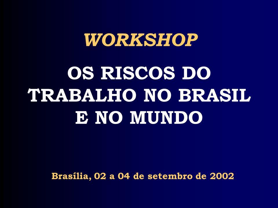 WORKSHOP OS RISCOS DO TRABALHO NO BRASIL E NO MUNDO Brasília, 02 a 04 de setembro de 2002