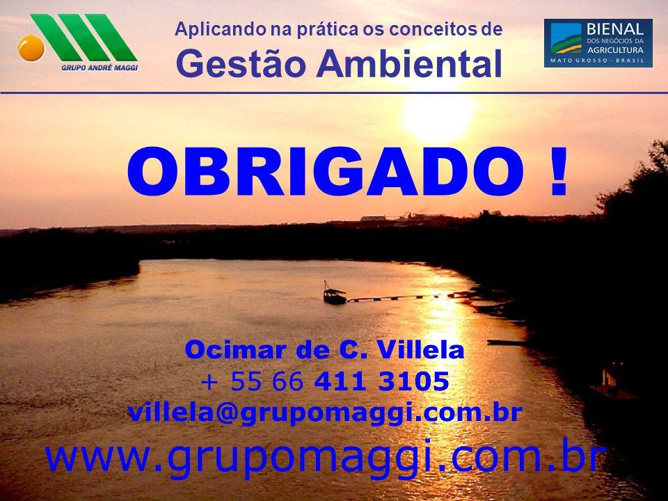 Aplicando na prática os conceitos de Gestão Ambiental OBRIGADO ! Ocimar de C. Villela + 55 66 411 3105 villela@grupomaggi.com.br www.grupomaggi.com.br