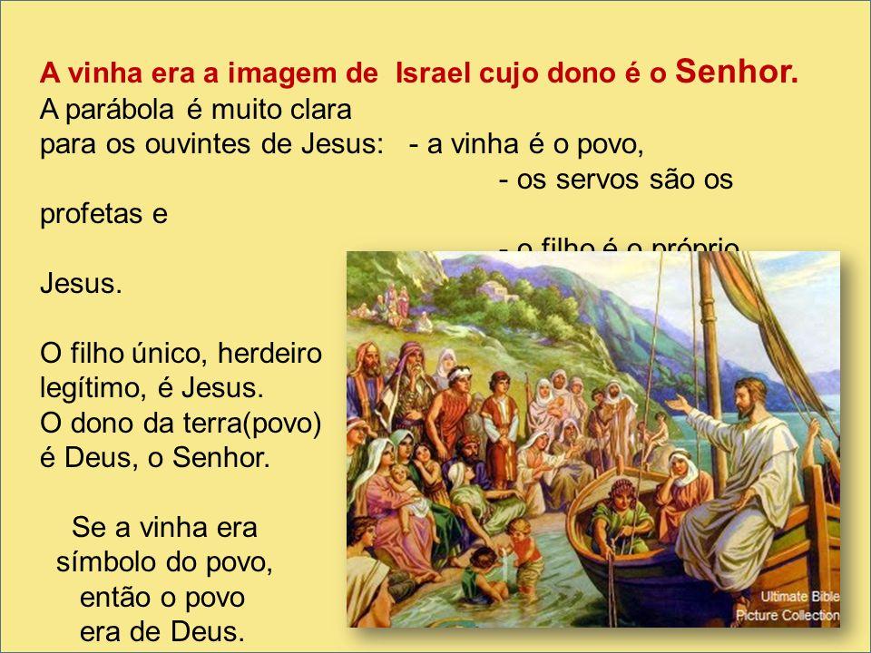 A vinha era a imagem de Israel cujo dono é o Senhor. A parábola é muito clara para os ouvintes de Jesus: - a vinha é o povo, - os servos são os profet