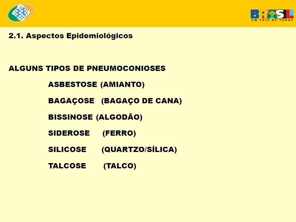 2.1. Aspectos Epidemiológicos ALGUNS TIPOS DE PNEUMOCONIOSES ASBESTOSE (AMIANTO) BAGAÇOSE (BAGAÇO DE CANA) BISSINOSE (ALGODÃO) SIDEROSE (FERRO) SILICO