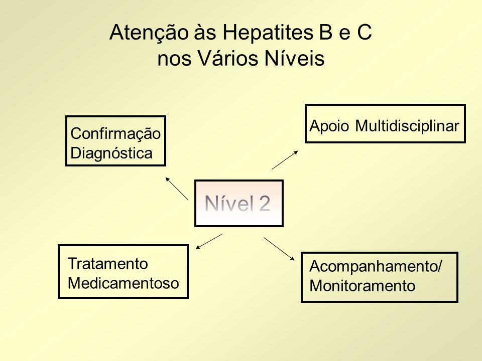 Atenção às Hepatites B e C nos Vários Níveis Nível 2 Confirmação Diagnóstica Tratamento Medicamentoso Apoio Multidisciplinar Acompanhamento/ Monitoram