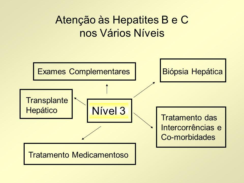 Atenção às Hepatites B e C nos Vários Níveis Nível 3 Biópsia HepáticaExames Complementares Tratamento Medicamentoso Tratamento das Intercorrências e C