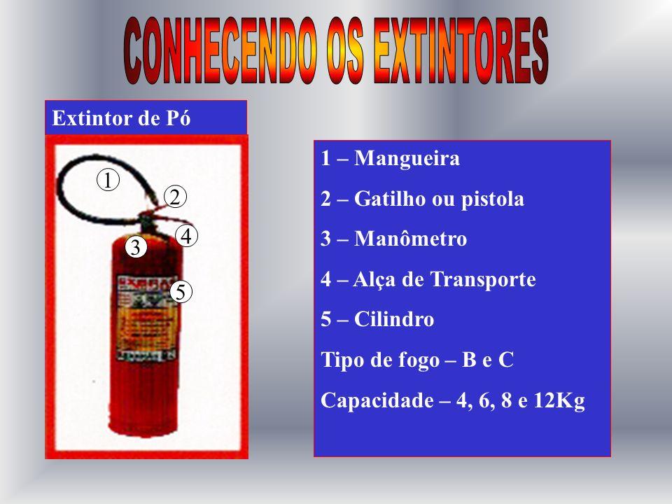 1 2 4 5 3 1 – Mangueira 2 – Gatilho ou pistola 3 – Manômetro 4 – Alça de Transporte 5 – Cilindro Tipo de fogo – A Capacidade – 10L Extintor de Água