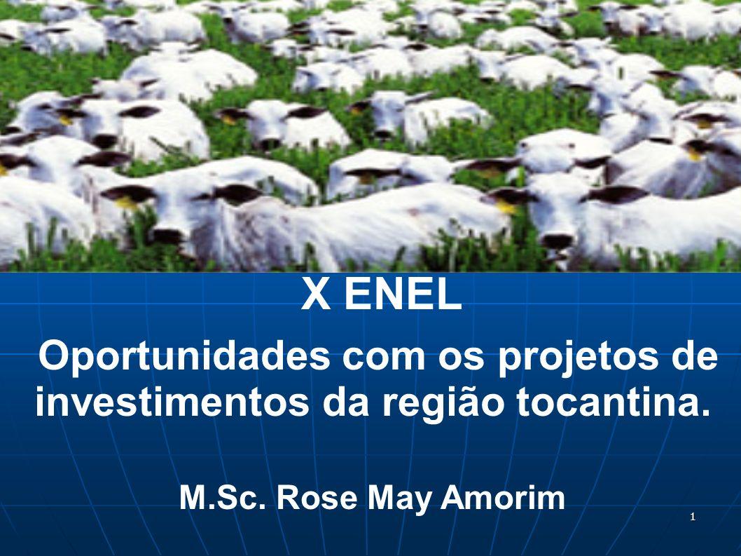 X ENEL Oportunidades com os projetos de investimentos da região tocantina. M.Sc. Rose May Amorim 1