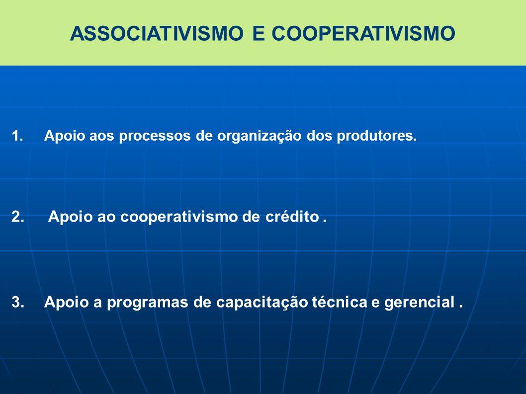 1.Apoio aos processos de organização dos produtores. 2. Apoio ao cooperativismo de crédito. 3.Apoio a programas de capacitação técnica e gerencial. AS