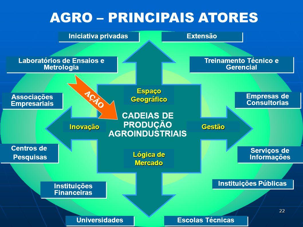 AGRO – PRINCIPAIS ATORES Treinamento Técnico e Gerencial Extensão Universidades Empresas de Consultorias Serviços de Informações Instituições Financei