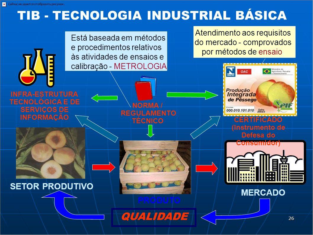 MERCADO PRODUTO SETOR PRODUTIVO QUALIDADE INFRA-ESTRUTURA TECNOLÓGICA E DE SERVIÇOS DE INFORMAÇÃO NORMA / REGULAMENTO TÉCNICO CERTIFICADO (Instrumento