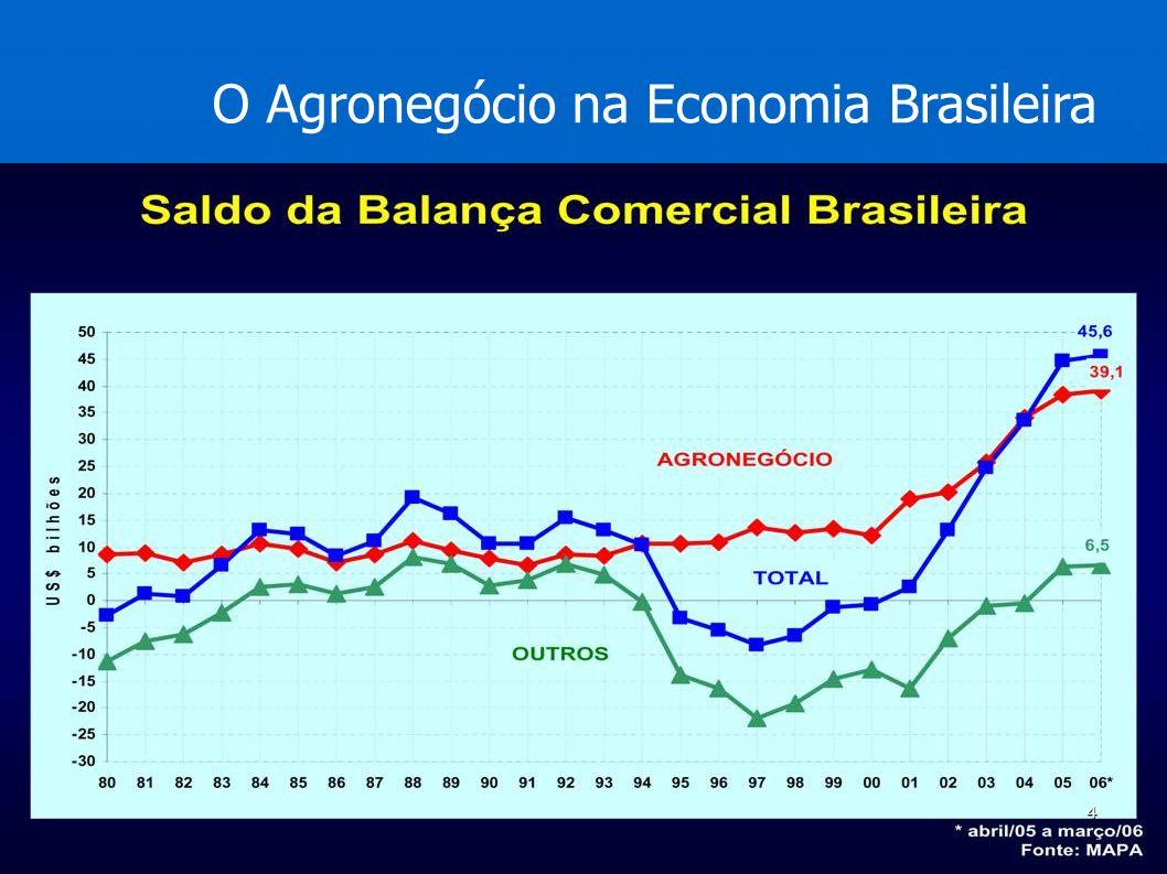 O Agronegócio na Economia Brasileira 4