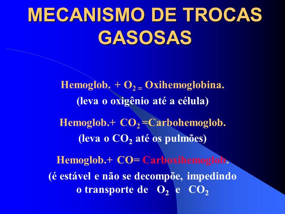 CLASSIFICAÇÃO DOS GASES E VAPORES 3) ASFIXIANTES QUÍMICOS Monóxido de Carbono Ácido Cianídrico Anilinas