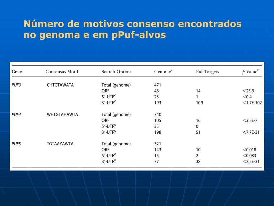 Número de motivos consenso encontrados no genoma e em pPuf-alvos