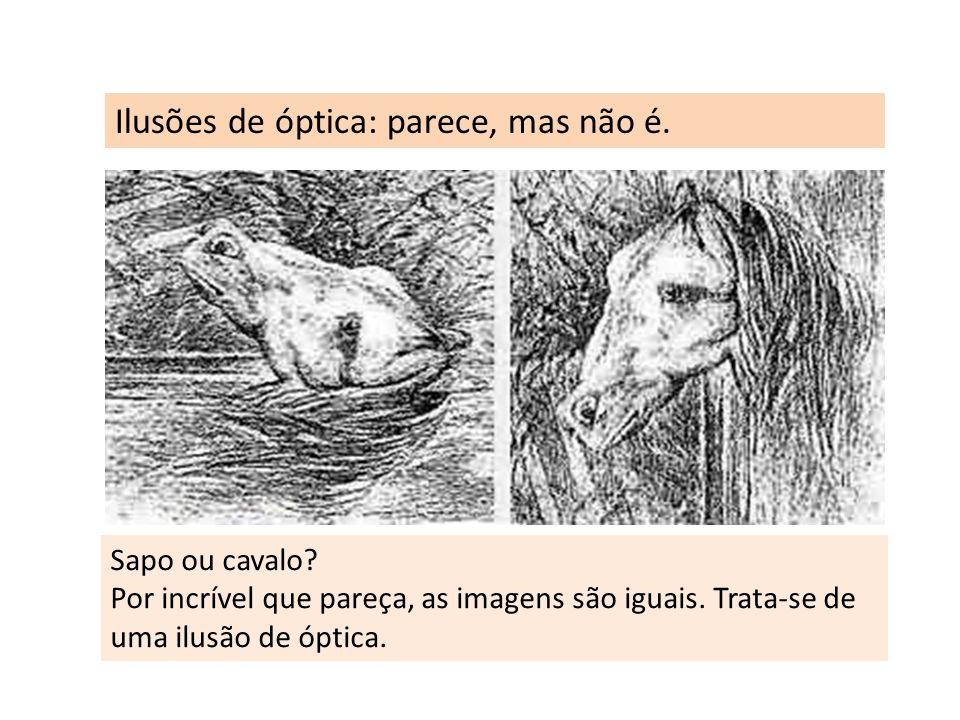 Ilusões de óptica: parece, mas não é. Sapo ou cavalo? Por incrível que pareça, as imagens são iguais. Trata-se de uma ilusão de óptica.