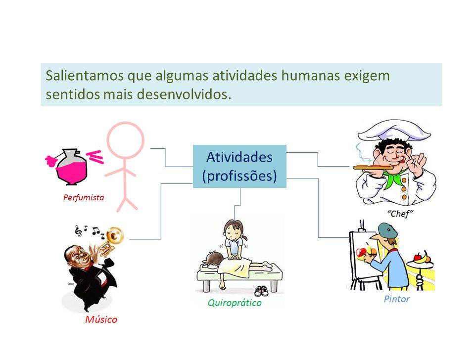 Salientamos que algumas atividades humanas exigem sentidos mais desenvolvidos. Atividades (profissões)