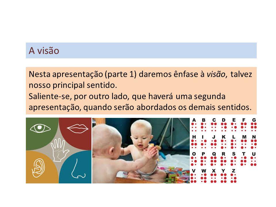Dentre os cinco sentidos humanos, como já dissemos, o mais importante pode ser a visão.