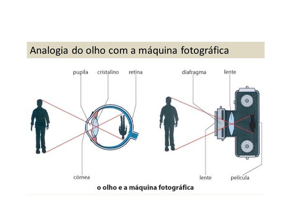 Analogia do olho com a máquina fotográfica