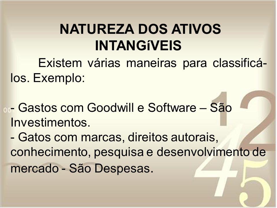 Existem 6 atividades principais dos Ativos Intangíveis.
