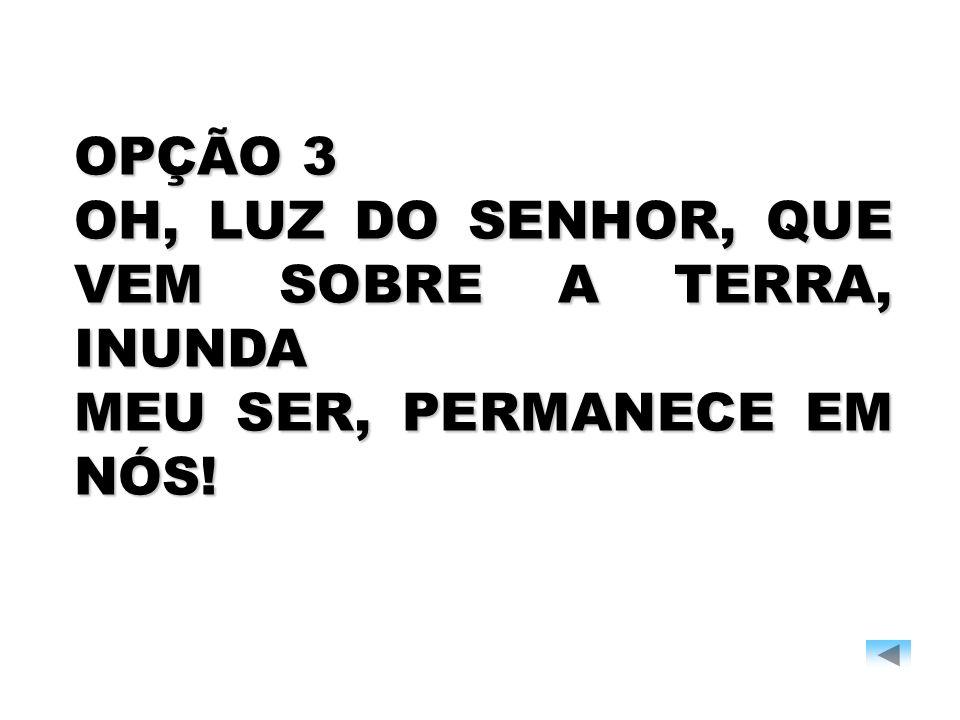 OPÇÃO 3 OH, LUZ DO SENHOR, QUE VEM SOBRE A TERRA, INUNDA MEU SER, PERMANECE EM NÓS!