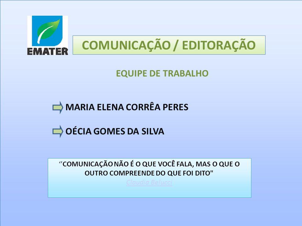 MARIA ELENA CORRÊA PERES OÉCIA GOMES DA SILVA COMUNICAÇÃO / EDITORAÇÃO EQUIPE DE TRABALHO COMUNICAÇÃO NÃO É O QUE VOCÊ FALA, MAS O QUE O OUTRO COMPREE