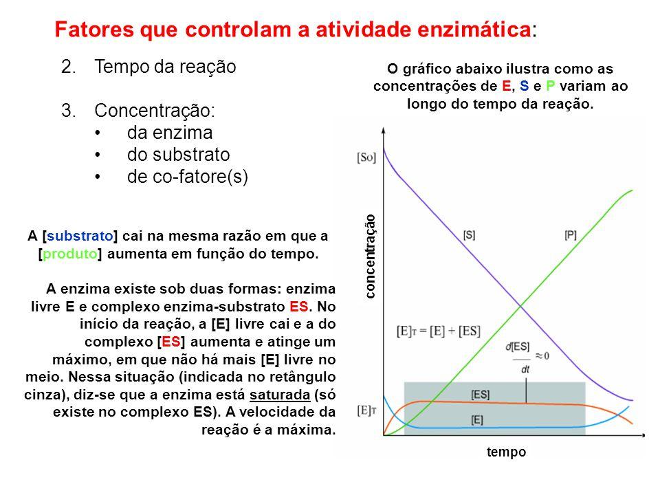 Fatores que controlam a atividade enzimática: 2.Tempo da reação 3.Concentração: da enzima do substrato de co-fatore(s) tempo concentração A [substrato