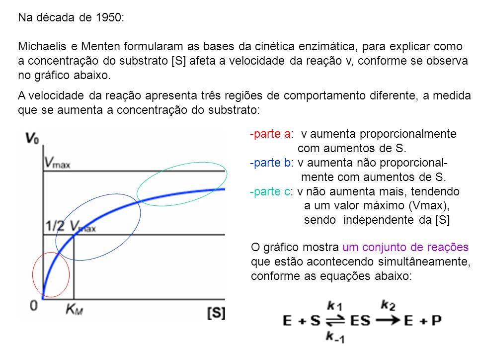 Na década de 1950: Michaelis e Menten formularam as bases da cinética enzimática, para explicar como a concentração do substrato [S] afeta a velocidad