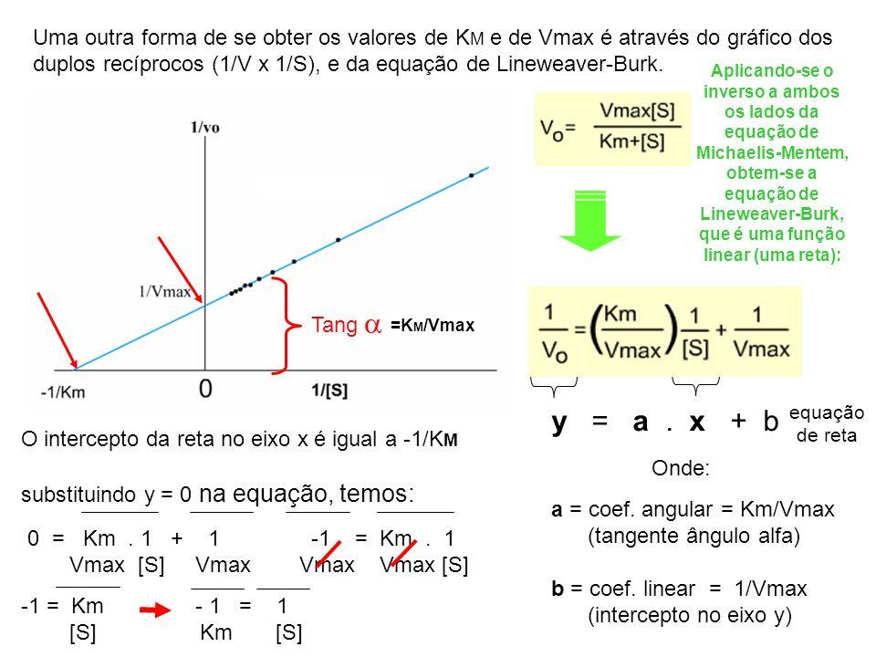 y = a. x + b equação de reta Aplicando-se o inverso a ambos os lados da equação de Michaelis-Mentem, obtem-se a equação de Lineweaver-Burk, que é uma
