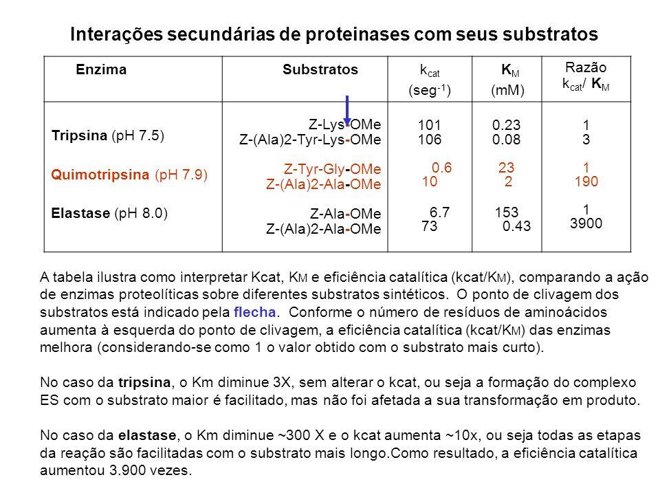 Enzima Substratosk cat (seg -1 ) K M (mM) Razão k cat / K M Tripsina (pH 7.5) Quimotripsina (pH 7.9) Elastase (pH 8.0) Z-Lys-OMe Z-(Ala)2-Tyr-Lys-OMe