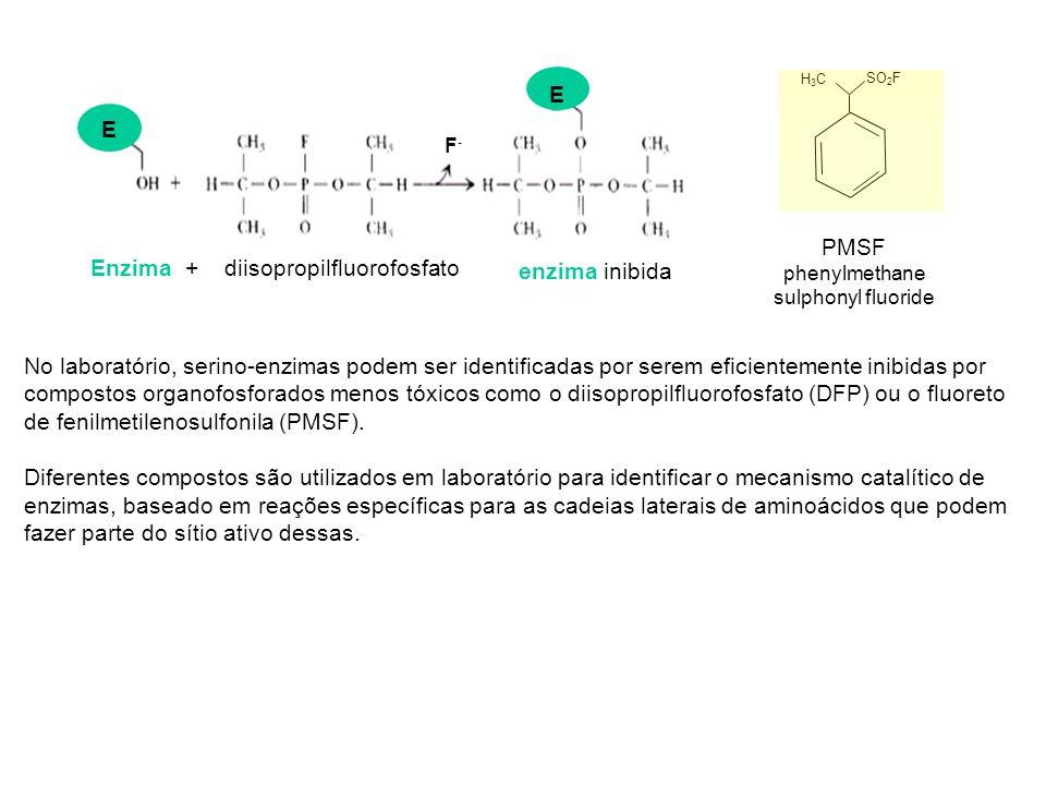 PMSF phenylmethane sulphonyl fluoride H3CH3C SO 2 F E E Enzima + diisopropilfluorofosfato F-F- enzima inibida No laboratório, serino-enzimas podem ser